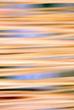 Abstract blurred background. Abstract motion blurred reed background royalty free stock photography