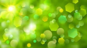 Abstract blurred background. With bokeh effect in green colors Stock Photography