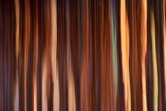 Abstract blurred carpet Royalty Free Stock Photos