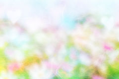 Abstract blurred or defocus royalty free stock photos