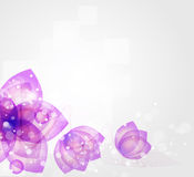 Abstract blurred flower background Royalty Free Stock Images