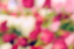 Abstract blurred flower background Royalty Free Stock Photos
