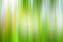 Abstract blurred green background spring summer Stock Photography