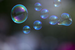 Abstract and blurred soap bubble Stock Photos