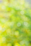 Abstract blurred yellow and green background Royalty Free Stock Photography