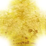 Abstract blurry background. light effects. grange Royalty Free Stock Photo