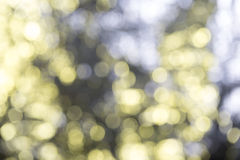 Abstract blurry lights. With bokeh for backgrounds and overlays Royalty Free Stock Photography