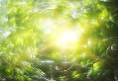 Abstract blurry spring nature bokeh background Royalty Free Stock Photo