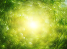 Abstract blurry spring nature bokeh background Stock Photo