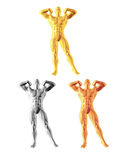 Abstract bodybuilder figure. Gold, silver and bronze variations Stock Photo