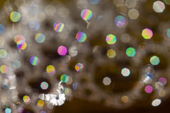Abstract bokeh background of garden flowers and plants Royalty Free Stock Images