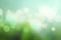 Abstract bokeh background with in soft green colors Stock Image
