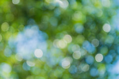 Abstract  bokeh background. Abstract texture,Green of light bokeh background bure Stock Photography