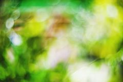 Abstract bokeh and blurred colorful nature background model used to stick text stock photo