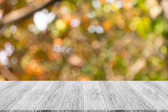 Abstract bokeh of nature with white wood terrace Stock Images