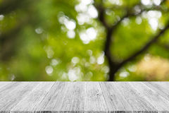 Abstract bokeh of nature with white wood terrace Stock Photos