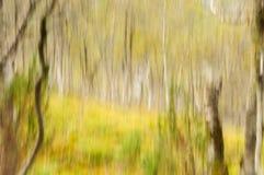 Abstract boslandschap 4 Royalty-vrije Stock Foto's