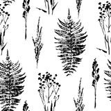 Abstract botanical seamless pattern. Vector herbal background. Royalty Free Stock Photo