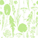 Abstract botanical seamless pattern. Vector herbal background. Stock Images