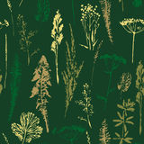 Abstract botanical seamless pattern. Vector herbal background. Royalty Free Stock Photos