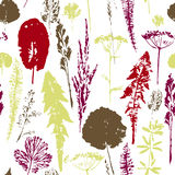 Abstract botanical seamless pattern. Vector herbal background. Royalty Free Stock Photography