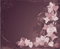 Abstract bougenvilia background royalty free illustration