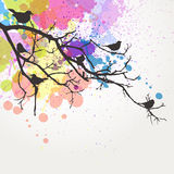 Abstract Branch Royalty Free Stock Photo
