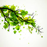 Abstract Branch Royalty Free Stock Photos