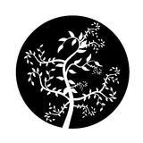Abstract branches. Illustration with abstract branches, black and white Royalty Free Stock Image