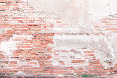 Abstract bricks wall background old  stucco color light gray dir Royalty Free Stock Photography