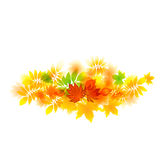 Abstract bright autumn leaves baner Royalty Free Stock Images
