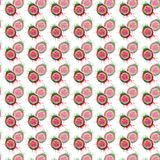 Abstract bright colorful delicious tasty yummy ripe juicy cute lovely red summer autumn cut watermelon with blots and spray patter. N watercolor hand Stock Photography