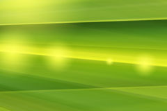 Abstract bright green lines background Royalty Free Stock Image