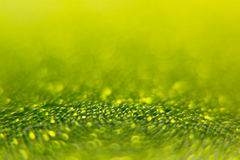 Abstract bright green spring background with blur and sparkles. Spring background. Summer background. Royalty Free Stock Image