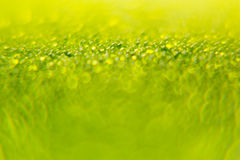 Abstract bright green spring background with blur and sparkles. Spring background. Summer background. Stock Photo