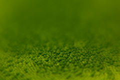 Abstract bright green spring background with blur and sparkles. Spring background. Summer background. Stock Photos