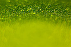 Abstract bright green spring background with blur and sparkles. Spring background. Summer background. Royalty Free Stock Photos