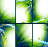 Bright floral vector backgrounds set Stock Image