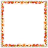 Abstract bright shiny frame Stock Photo