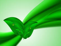 Abstract bright summer background with green lines connected green leaves Stock Photos