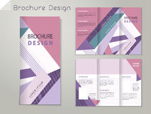 Abstract brochure, banner-new-15. Trendy tri-fold brochure template design with colorful stripe royalty free illustration