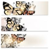 Abstract brochures set in floral style with butterflies Royalty Free Stock Image