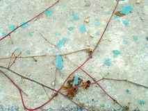 Abstract broken turquoise glass and climbing plants Stock Photo