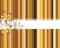 Abstract brown background. Vector illustration of brown stripes and flowers Royalty Free Stock Image