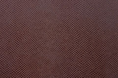 Abstract brown color leather Royalty Free Stock Photography
