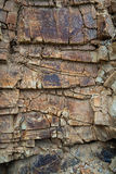 Abstract brown stone background Stock Images