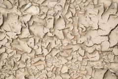 Abstract brown texture of the shriveled sandy soil Stock Photography
