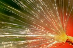 The abstract brush of silk royalty free stock images