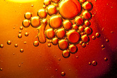 Abstract bubbles. Mixture of olive oil and water Royalty Free Stock Images