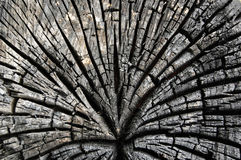 Abstract burn wood background Royalty Free Stock Photos